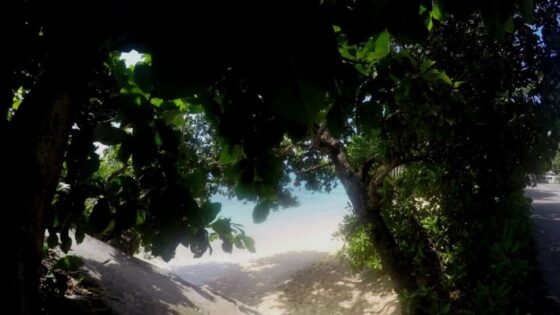 Plaża Glacis na wyspie Mahe